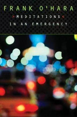 Meditations in an Emergency cover image